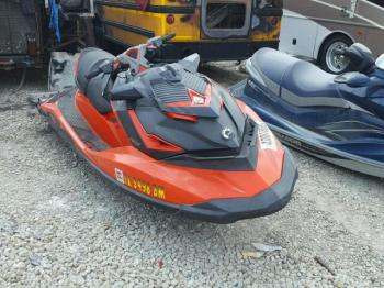 Salvage Sea-Doo Other